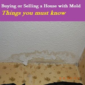 House with mold